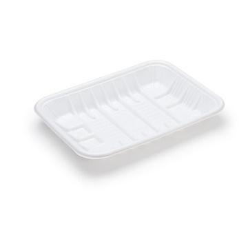 Plastic Tray GPT4