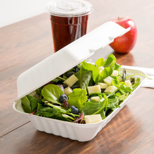 Eco-friendly bagasse containers