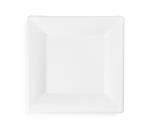 10in square bagasse plate