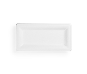 10 x 5in rectangular bagasse plate